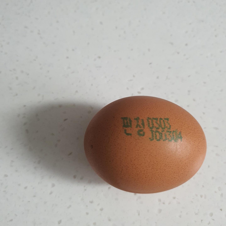 계란 난각사진.jpg