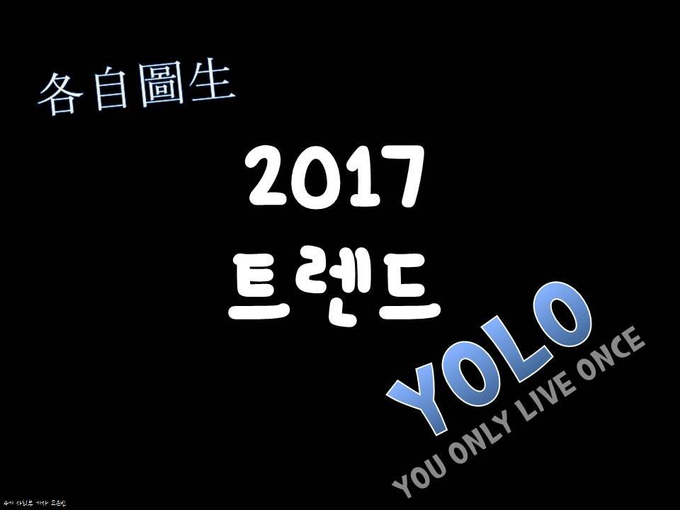 YOLO.jpg
