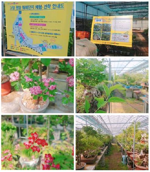 고양 꽃축제 편집.png