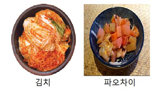 김치와 파오차이.PNG