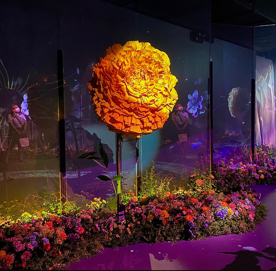 big flower garden-허지원기자.jpg